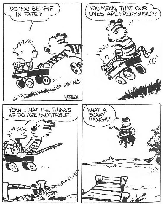 Calvin and Hobbes Fate Predestination